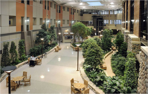 Not all hospitals have to resemble correctional facilities.